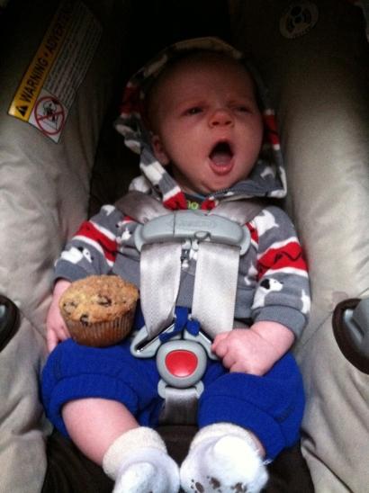 arlo muffin